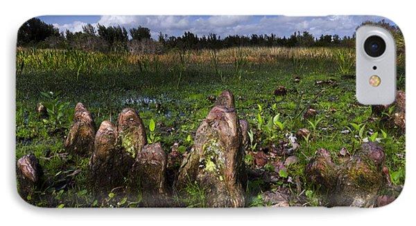 Garden In The Glades Phone Case by Debra and Dave Vanderlaan