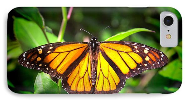 Garden Of The Monarch IPhone Case by Mark Andrew Thomas