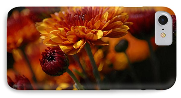 IPhone Case featuring the photograph Garden Party by Lena Wilhite