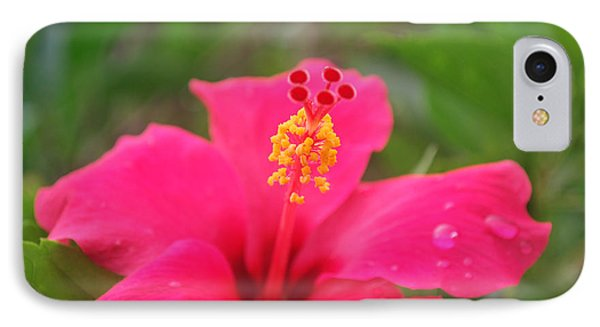IPhone Case featuring the photograph Garden Rains by Miguel Winterpacht