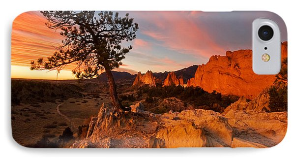 Garden Sunrise IPhone Case