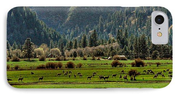 IPhone Case featuring the photograph Garden Valley Elk Herd by Sam Rosen