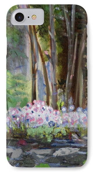 IPhone Case featuring the painting Gateway At The Balsams by Michael Daniels