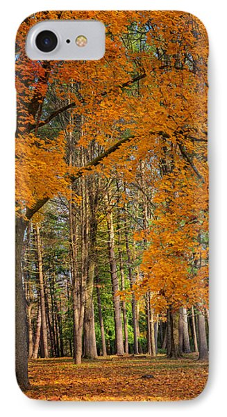 Gateway To The Forest IPhone Case
