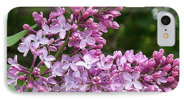 Gathering Lilacs IPhone Case by Joy Nichols