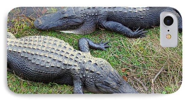 Gators IPhone Case by Carey Chen
