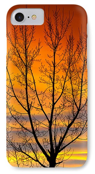 Gavins Sunset 2 IPhone Case by James BO  Insogna