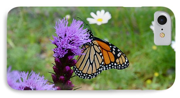 Gayfeathers And Butterfly Phone Case by Sandra Updyke