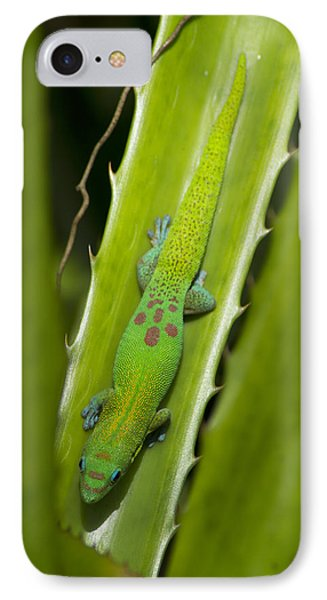 Gecko Phone Case by Mike Herdering