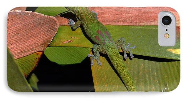 Gecko IPhone Case by Pamela Walton