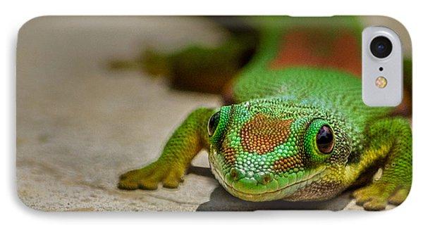 Gecko Portrait IPhone Case by Linda Villers