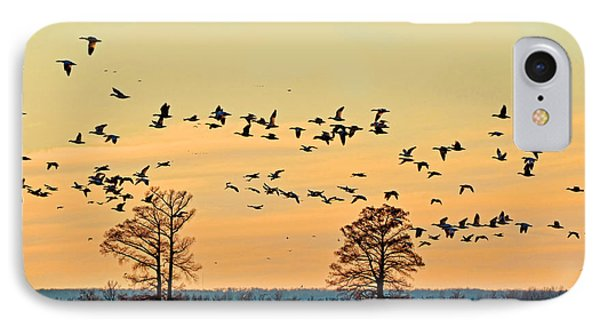 Geese In Flight I Phone Case by Debbie Portwood