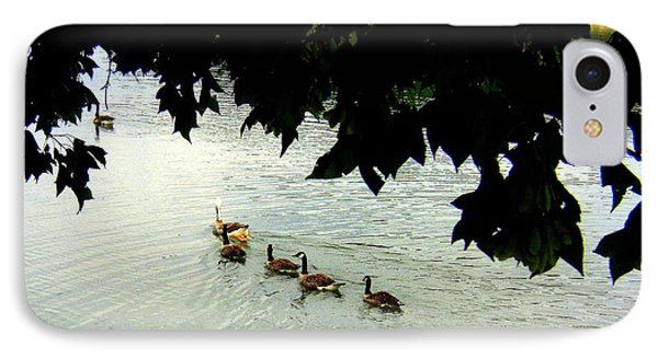 Geese On The Lake IPhone Case