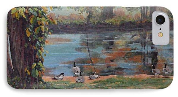 Sunbathing Geese IPhone Case by Celeste Drewien