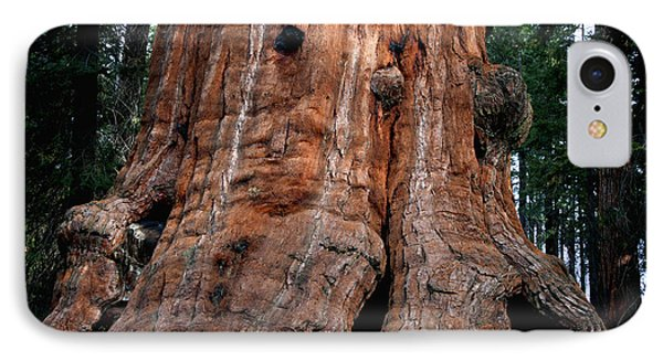 General Grant Tree IPhone Case by Ivete Basso Photography