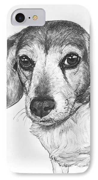 Gentle Beagle IPhone Case by Kate Sumners