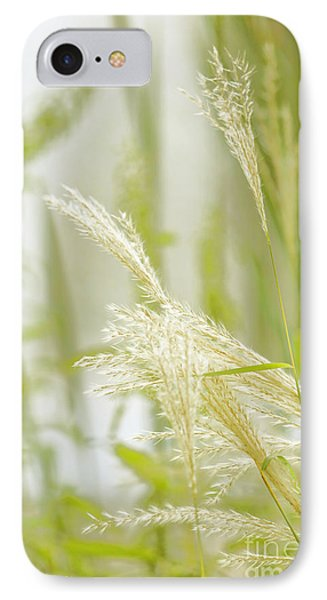 Gentle Touch Of Summer IPhone Case by Kate Purdy