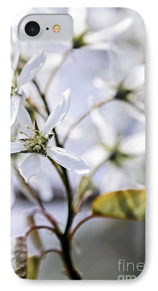 Gentle White Spring Flowers Phone Case by Elena Elisseeva