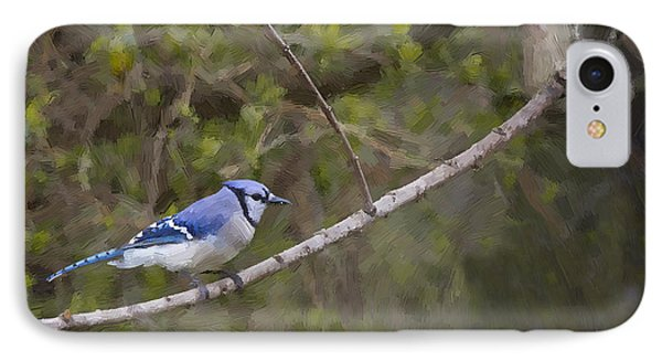 Georgia Bluejay In Spring Phone Case by Cris Hayes