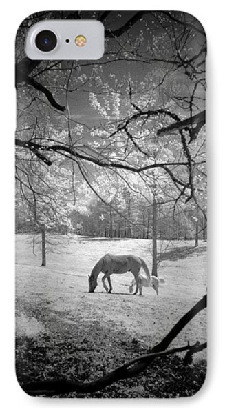 Georgia Horses IPhone Case by Bradley R Youngberg