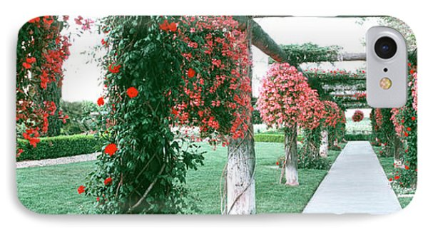 Geranium And Rose Vines Along A Walkway IPhone Case