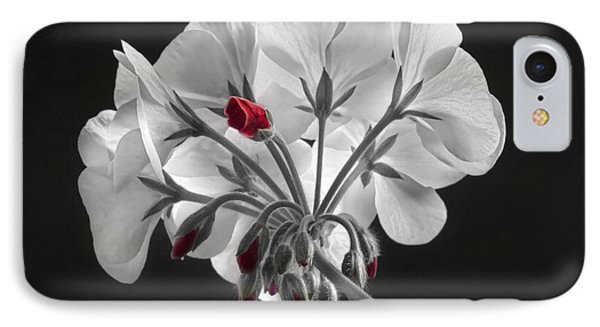 Geranium Flower In Progress  IPhone Case by James BO  Insogna