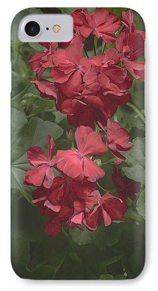 IPhone Case featuring the photograph Geranium I by Wayne Meyer