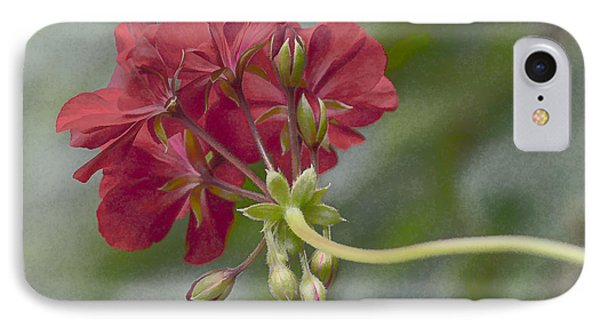 IPhone Case featuring the photograph Geranium IIi by Wayne Meyer