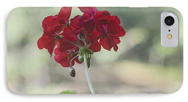 IPhone Case featuring the photograph Geranium Iv by Wayne Meyer