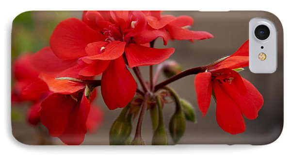 Geranium IPhone Case by Ivete Basso Photography