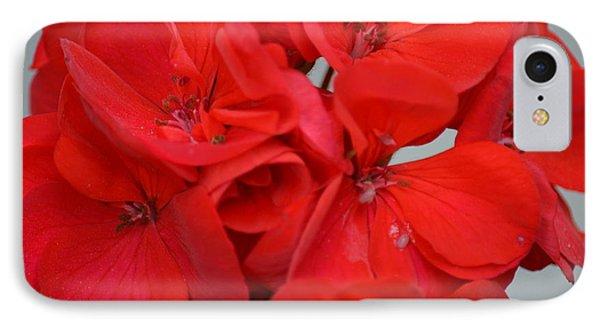 Geranium Red IPhone Case by Maria Urso