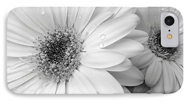 Gerber Daisies In Black And White Phone Case by Jennie Marie Schell