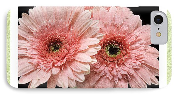 Gerber Daisy Dream 4 IPhone Case by Andee Design