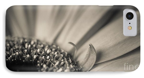 Gerbera Blossom - Bw Phone Case by Hannes Cmarits