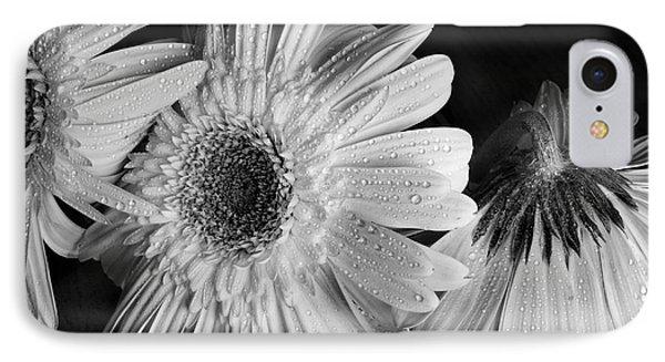 Gerbera Daisies Black And White Phone Case by Tom Brickhouse