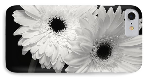 Gerbera Daisy Sisters IPhone Case