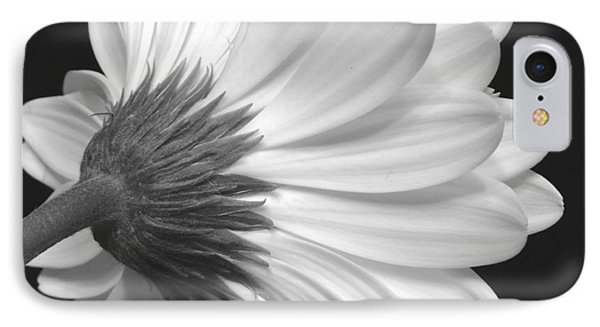 Gerbera Daisy Monochrome IPhone Case