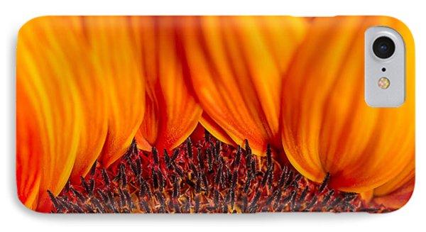 Gerbera On Fire IPhone Case