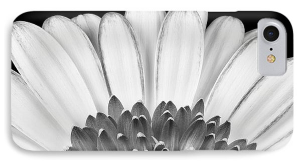 Gerbera Rising IPhone Case by Adam Romanowicz