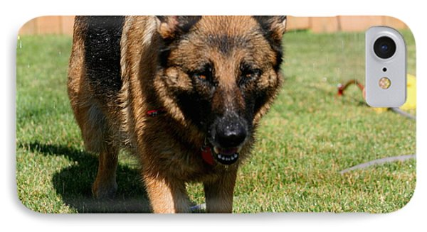 German Shepherd Phone Case by Kay Novy