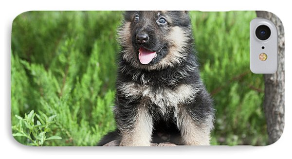 German Shepherd Puppy Sitting On A Rock IPhone Case by Zandria Muench Beraldo