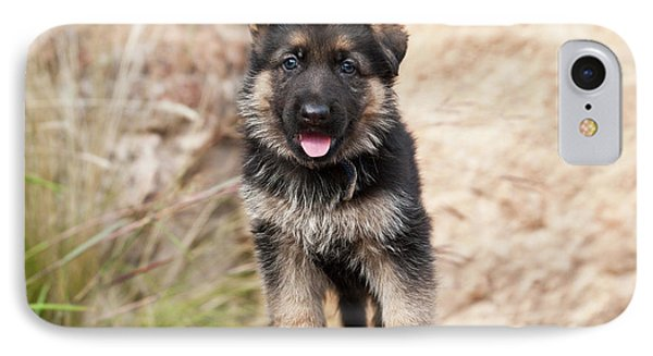German Shepherd Puppy Standing IPhone Case by Zandria Muench Beraldo
