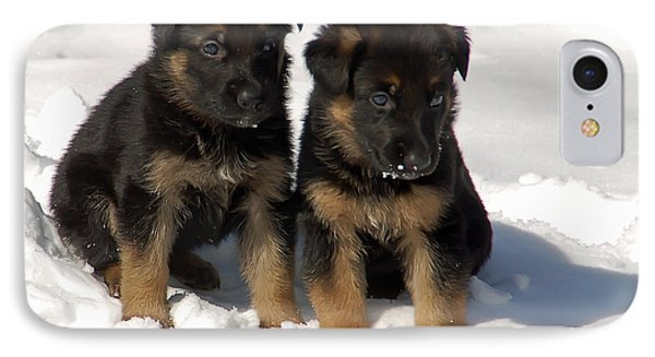 German Shepherd Pups IPhone Case by Aimee L Maher Photography and Art Visit ALMGallerydotcom