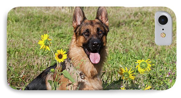 German Shepherd Sitting IPhone Case by Zandria Muench Beraldo