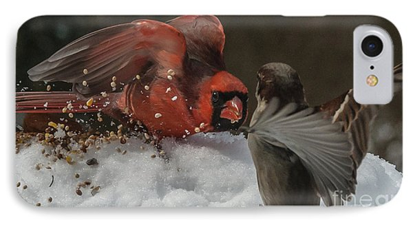 Get Off My Feeder IPhone Case by Jim Moore