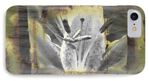 IPhone Case featuring the photograph Ghost Flower 2 by Amanda Eberly-Kudamik