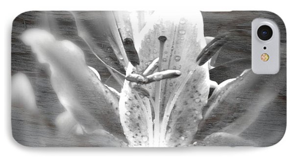 IPhone Case featuring the photograph Ghost Flower by Amanda Eberly-Kudamik