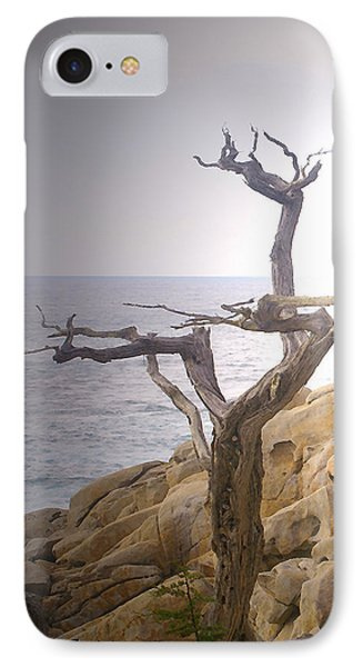Ghost Tree Detail Phone Case by Barbara Snyder