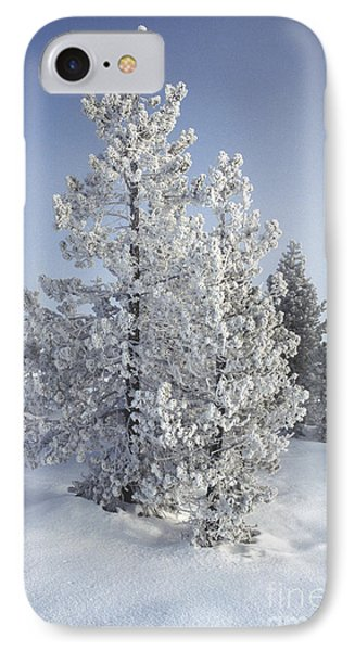 Ghost Trees Of Yellowstone Phone Case by Sandra Bronstein