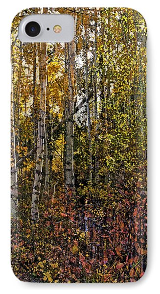 Ghosts Of A Quaking Aspen IPhone Case by Eric Rundle